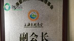 2014年上海黎川商会副会长