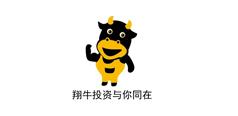 上海翔牛投资咨询有限公司